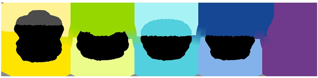 Web programmer to apprentice programmer pragmatic programming journey